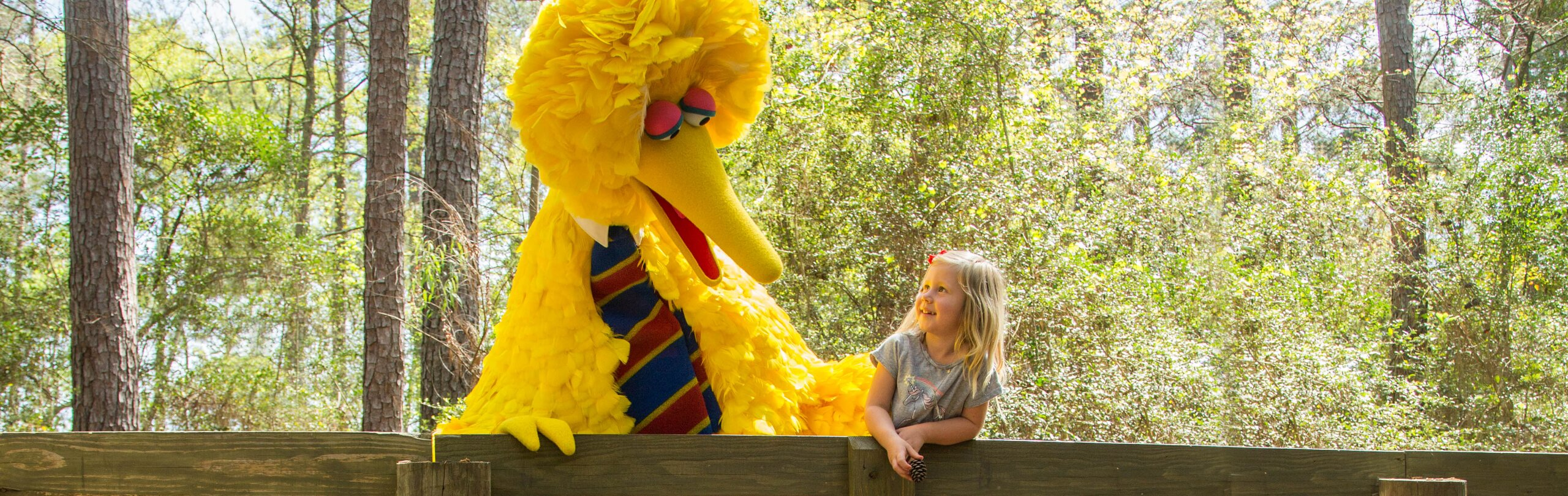 Big Bird and a young girl stand on a bridge and smile at each other